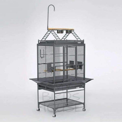 Avian Adventures Chiquita Play Top Bird Cage