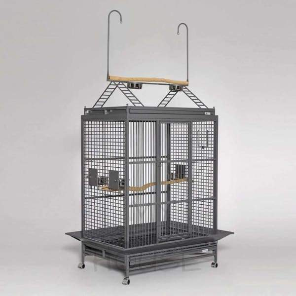 Avian Adventures Grande Play Top Bird Cage