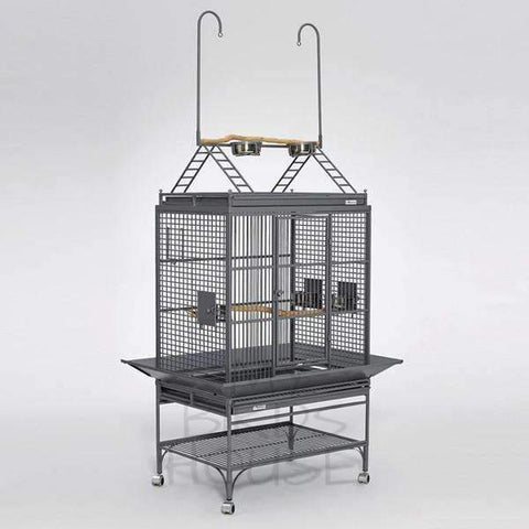 Avian Adventures Mediana Play Top Bird Cage