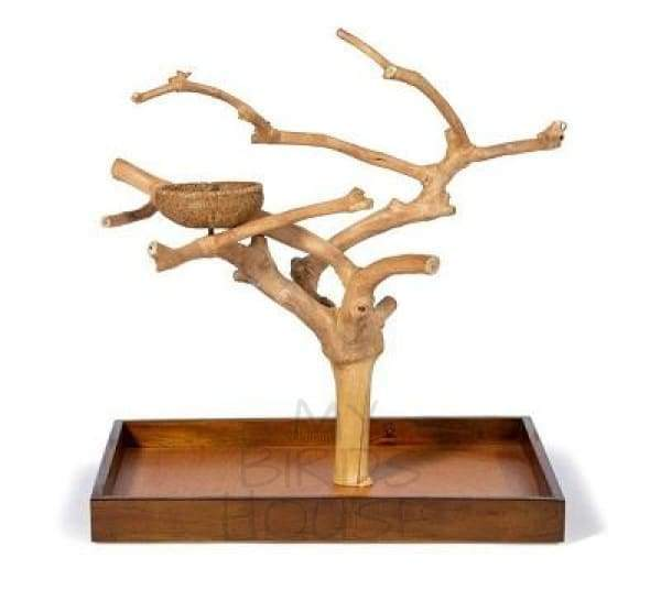 Coffeawood Java Tree Mini Table Top Playstand - Medium