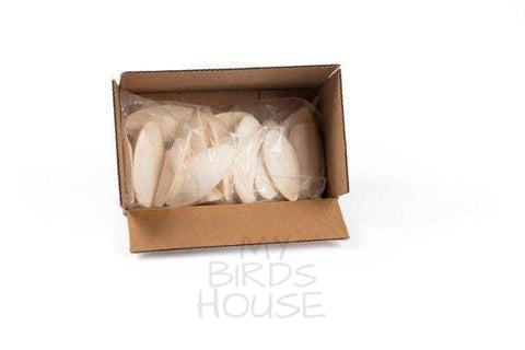 Medium Cuttlebone - Bulk Box of 25 Pieces