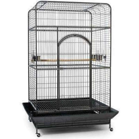 Prevue Hendryx Empire Large Square Top Bird Cage Parrot Macaw