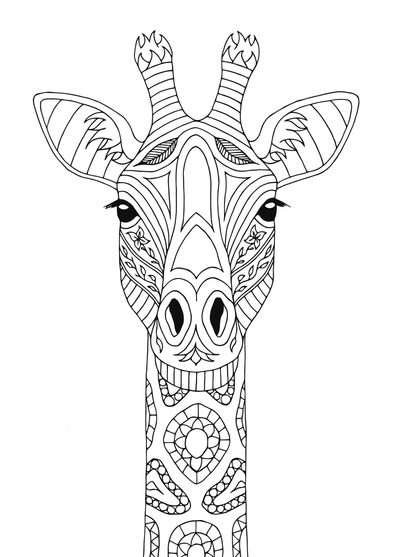 Illustrate Colouring Pages