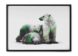 Arctic Polar Bear Family