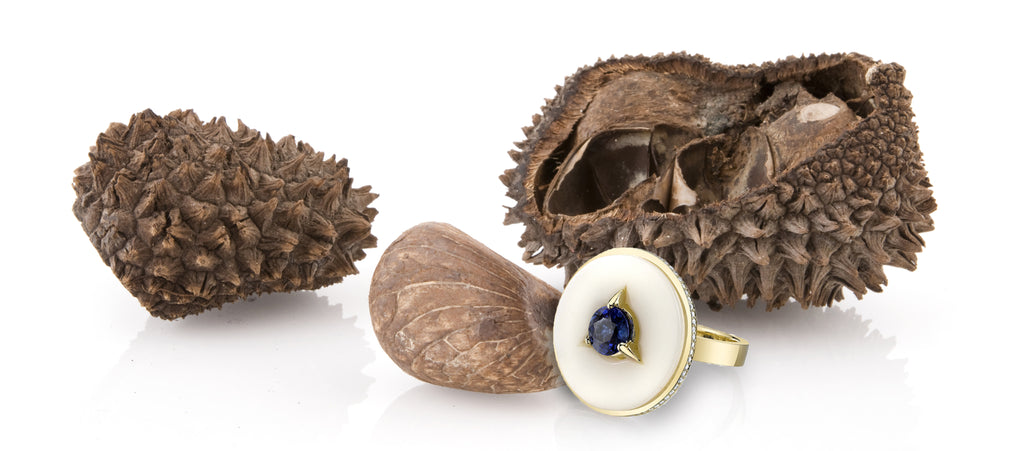 Mindful Luxury: The Tagua Nut