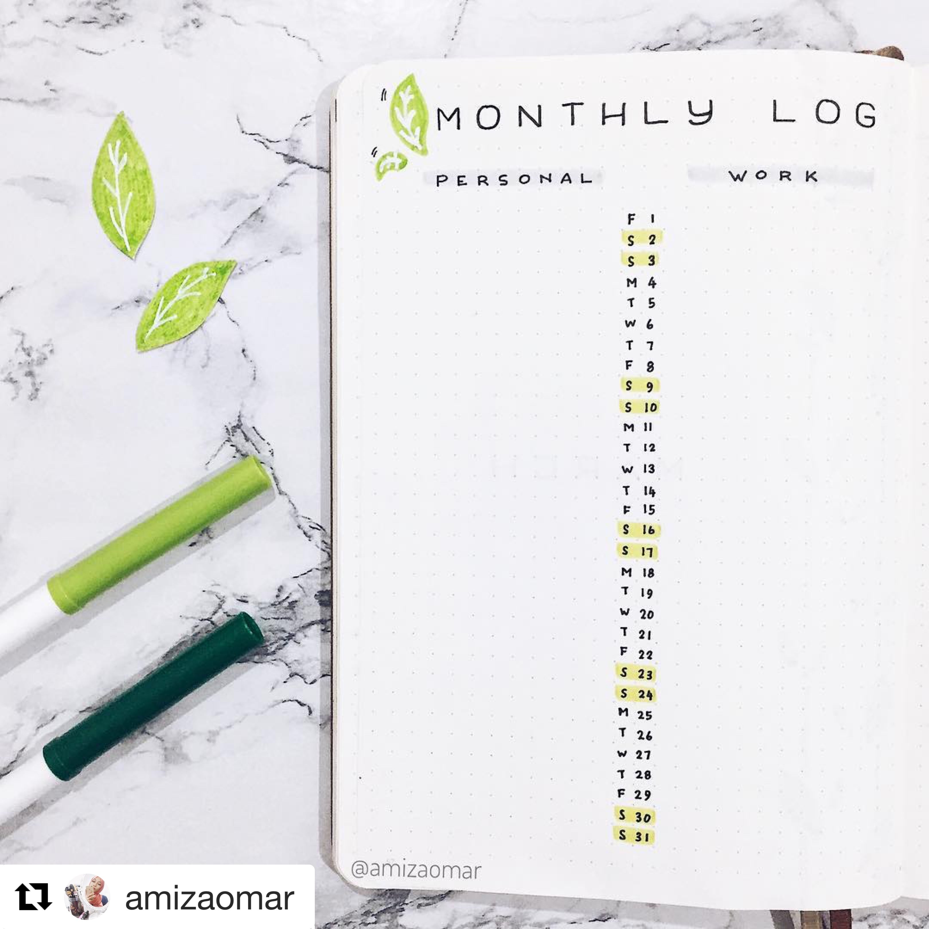 Amiza Monthly Log