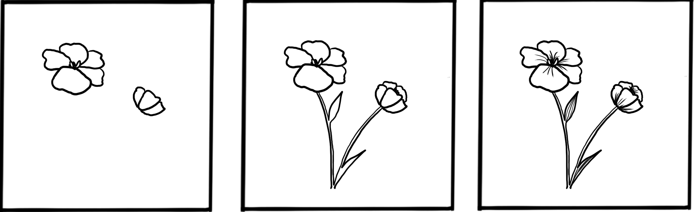 how to draw a winter primrose flower