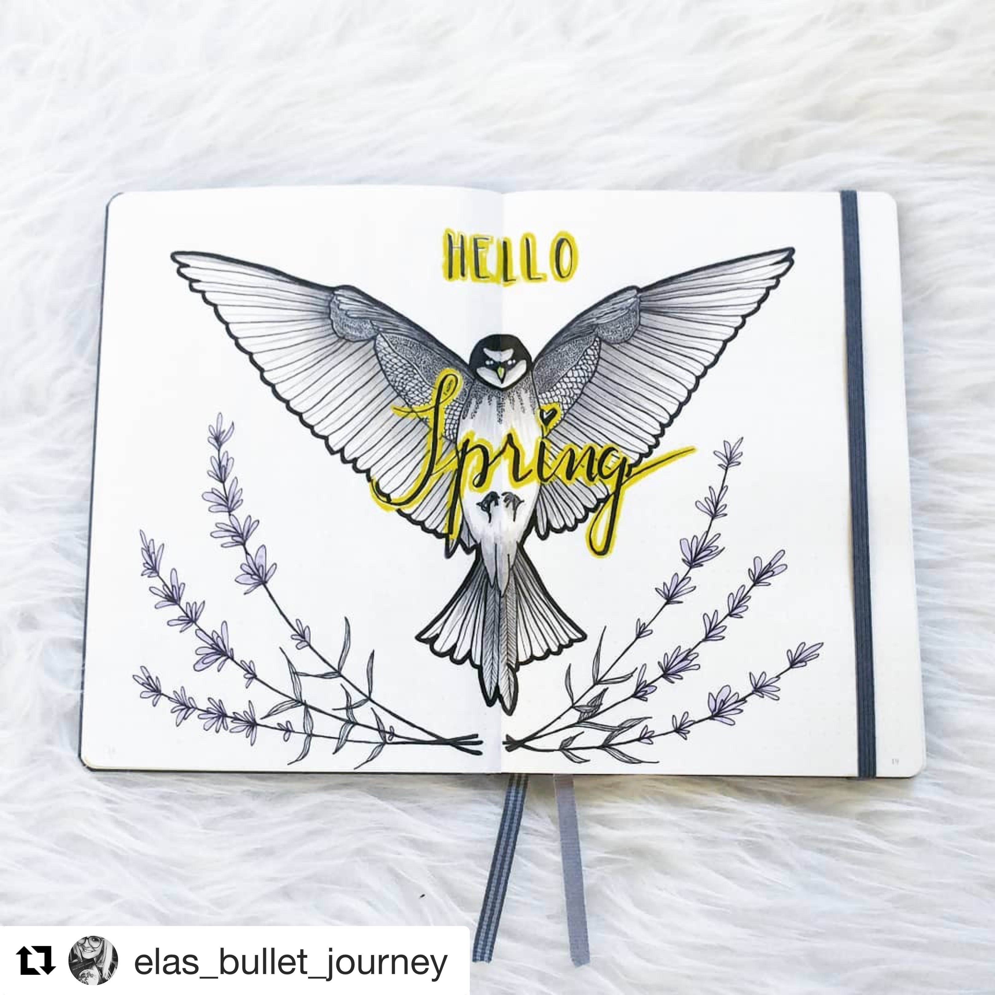 Welcome spring spread