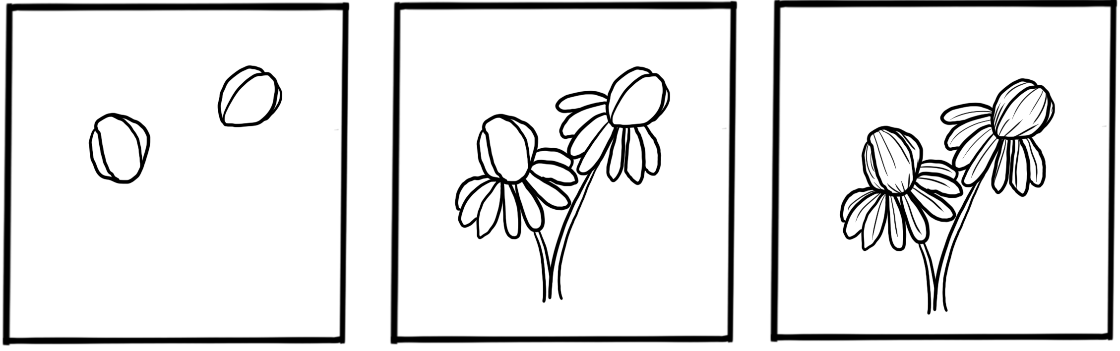how to draw a winter aconite flower