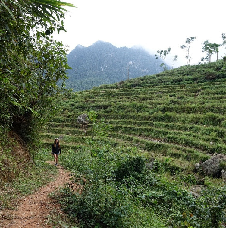 72 Hours in Vietnam: Hanoi And Mai Chau Valley