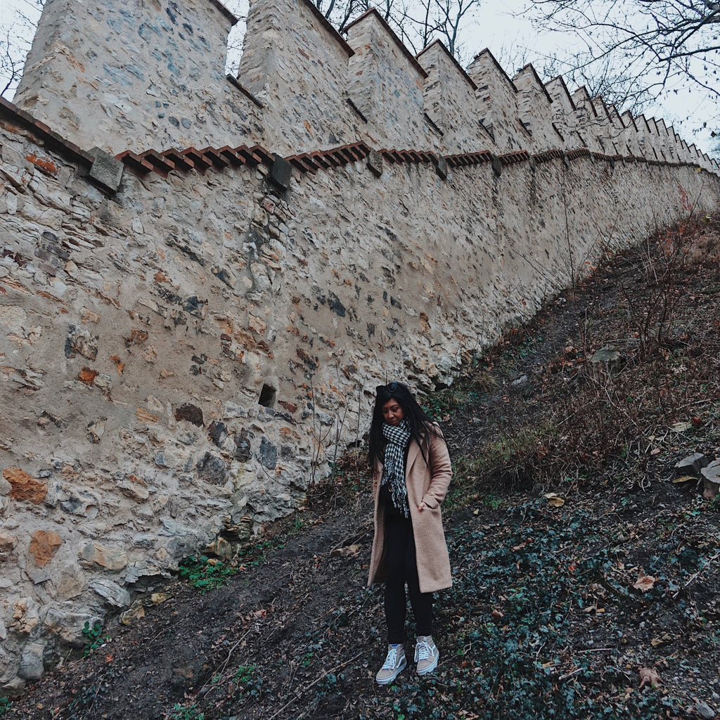 Hunger Wall in Prague