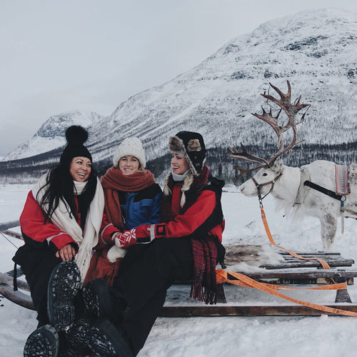 TROMSØ - REINDEER SLEDDING AND SAMI CULTURE