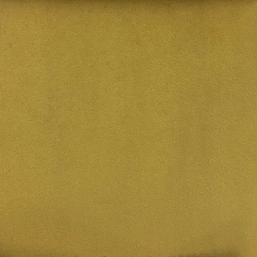 Highbury - Solid Plush Microvelvet Fabric Upholstery Velvet Fabric by the Yard - Available in 47 Colors - Gold - Top Fabric - 28