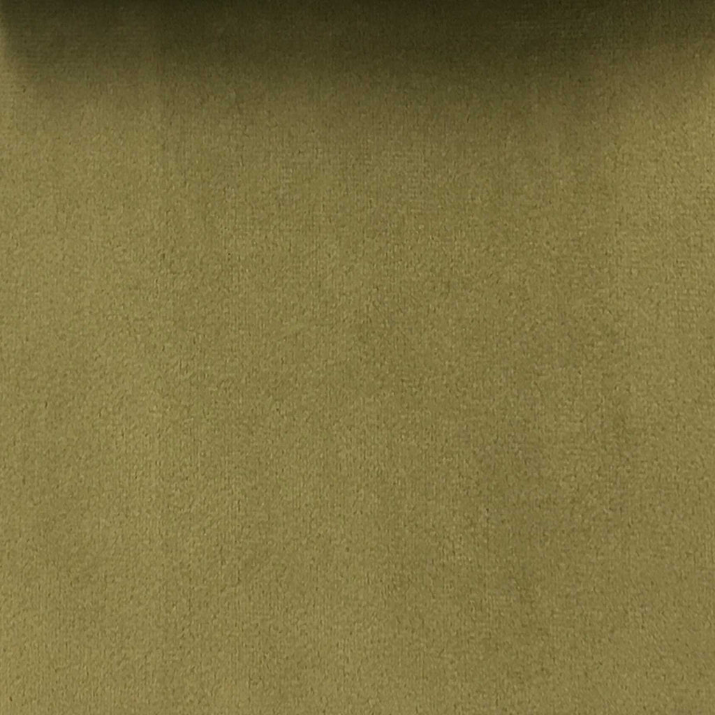 Highbury - Solid Plush Microvelvet Fabric Upholstery Velvet Fabric by the Yard - Available in 47 Colors - Tarragon - Top Fabric - 31