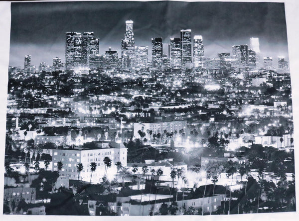 Los Angeles - Printed Picture of Downtown LA in a White Velvet