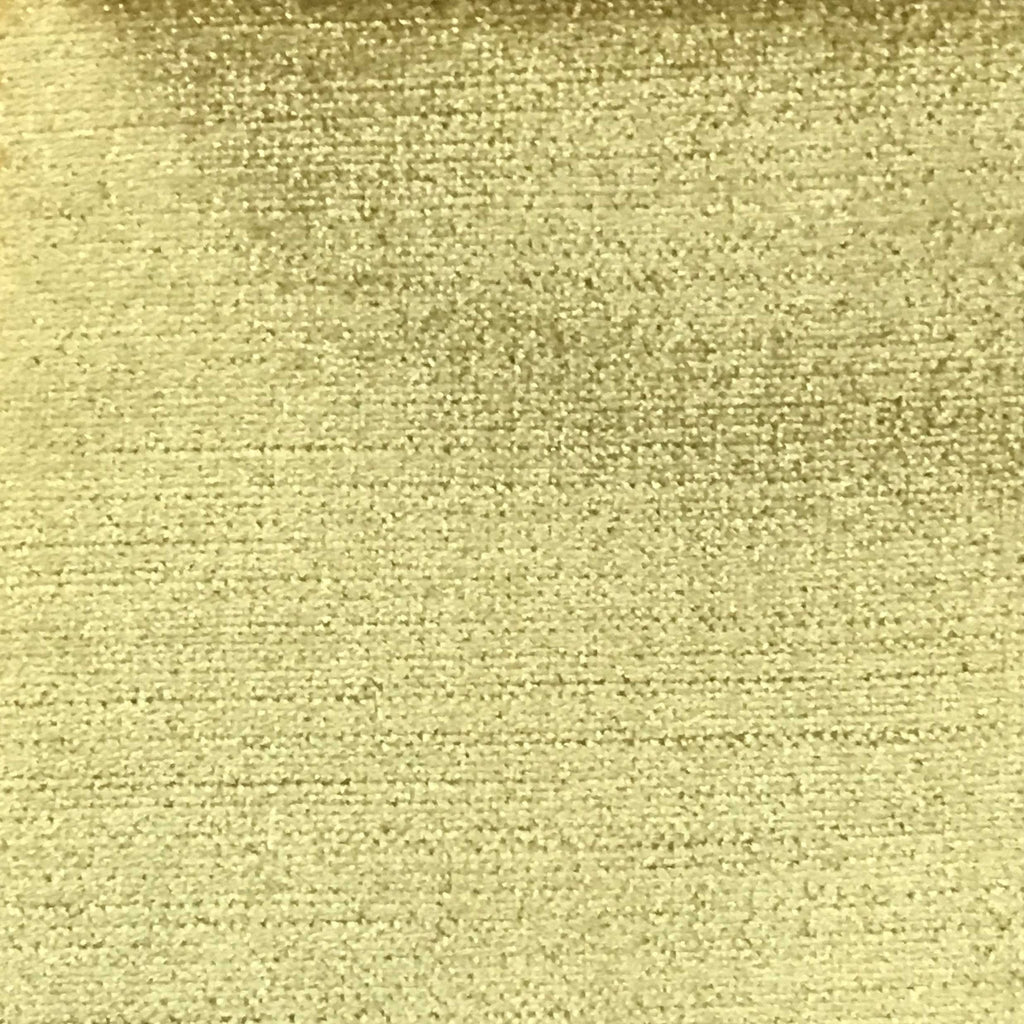 Queen - Lustrous Metallic Solid Cotton Rayon Blend Upholstery Velvet Fabric by the Yard - Available in 83 Colors - Mimosa - Top Fabric - 19