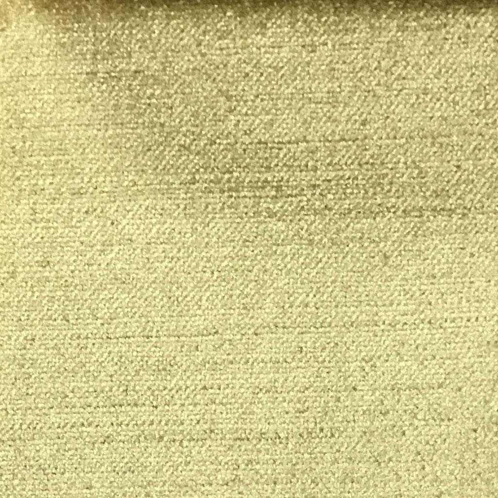 Queen - Lustrous Metallic Solid Cotton Rayon Blend Upholstery Velvet Fabric by the Yard - Available in 83 Colors - New Wheat - Top Fabric - 18