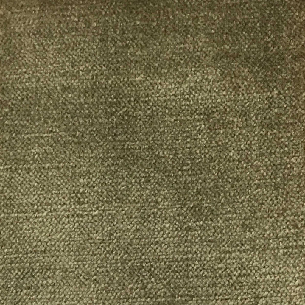 Queen - Lustrous Metallic Solid Cotton Rayon Blend Upholstery Velvet Fabric by the Yard - Available in 83 Colors - Wheat - Top Fabric - 8