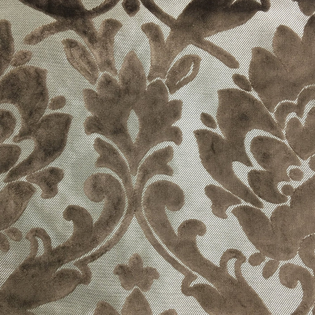 Radcliffe - Damask Pattern Lurex Burnout Velvet Upholstery Fabric by the Yard - Available in 23 Colors - Bark - Top Fabric - 31