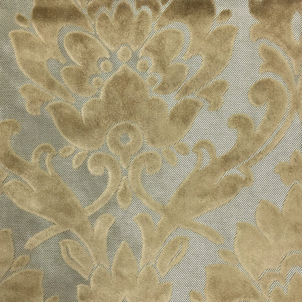 Radcliffe - Damask Pattern Lurex Burnout Velvet Upholstery Fabric by the Yard - Available in 23 Colors - Latte - Top Fabric - 29