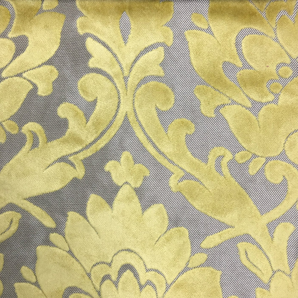 Radcliffe - Damask Pattern Lurex Burnout Velvet Upholstery Fabric by the Yard - Available in 23 Colors - Sunny - Top Fabric - 27