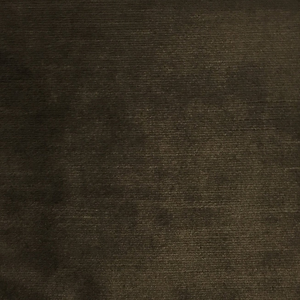 Waterloo - Slubbed Plush Velvet Upholstery Fabric by the Yard - Available in 15 Colors - Java - Top Fabric - 13
