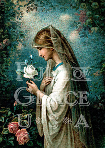 Our Lady of the Mystical Rose Print 5X7