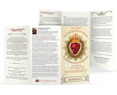 "Larger Font Surrender Novena Trifold Holy Cards (NEW-Easy to read larger font, 8"" X 4.25"" folded)"