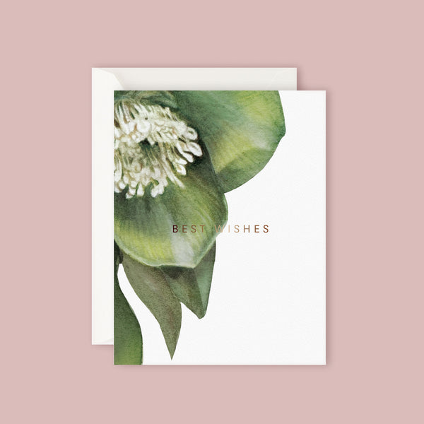 Father Rabbit Card - Hellebore Best Wishes-gift-card-blush-bouquet-flowers