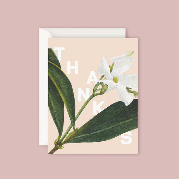 Father Rabbit Card - Jasmine Thanks- thankyou-flowers-gift-auckland-delivery
