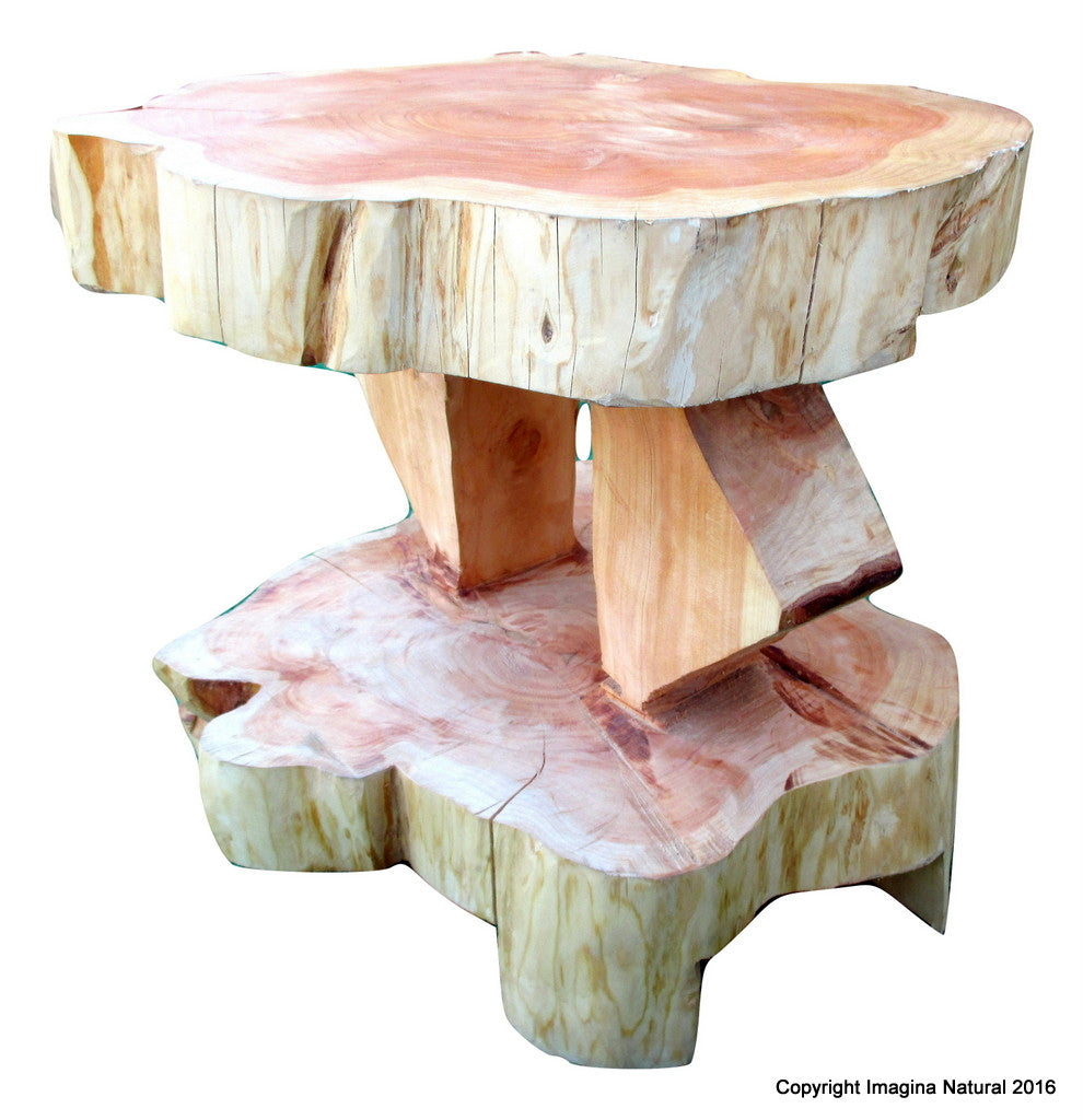 Double Level Cypress Tree Trunk Handmade Coffee Table - Free Shipping - Imagina Natural