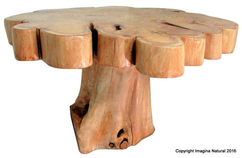 Cypress Tree Trunk Handmade Coffee Table - Imagina Natural