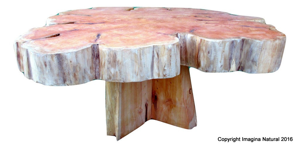 Large Cypress Handmade Tree Slice Slab Coffee Table Rustic Chilean Log Table Imagina Natural