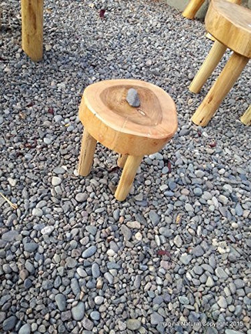 Childrens Stool / Mini Table Naturally Unique Cypress Tree Trunk Handmade Coffee Table - Log Rustic Chilean - Free Shipping Included - Imagina Natural
