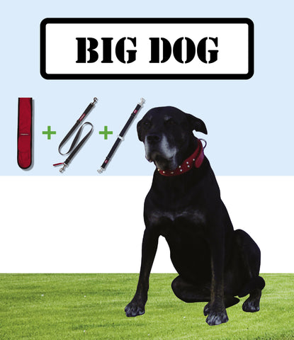 Big Dog Package
