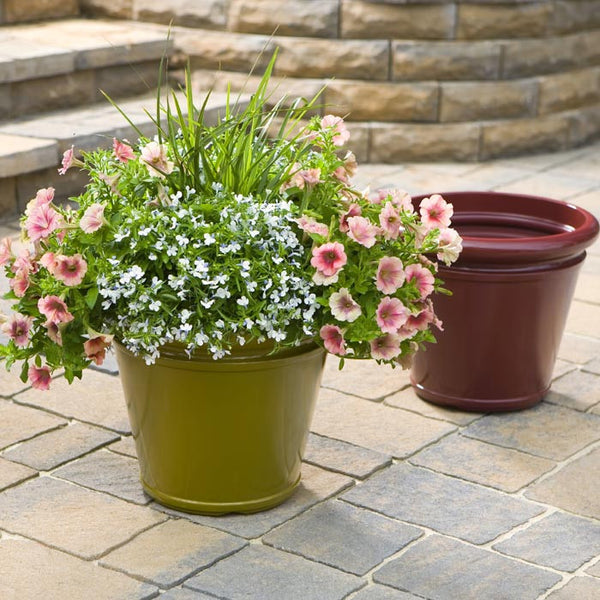 Selecting a Container for Container Gardening