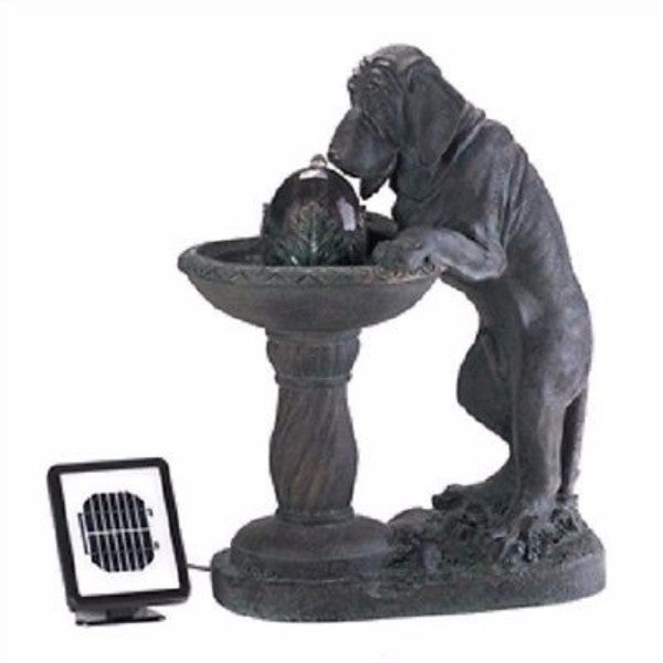 Outdoor Curious Dog Solar Powered Fountain / Garden Statue - YourGardenStop
