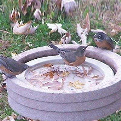 Bird Bath Raft by Songbird Essentials - YourGardenStop