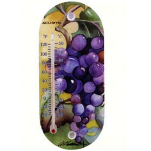 8 inch Suction Cup Bird Themed Thermometer - YourGardenStop
