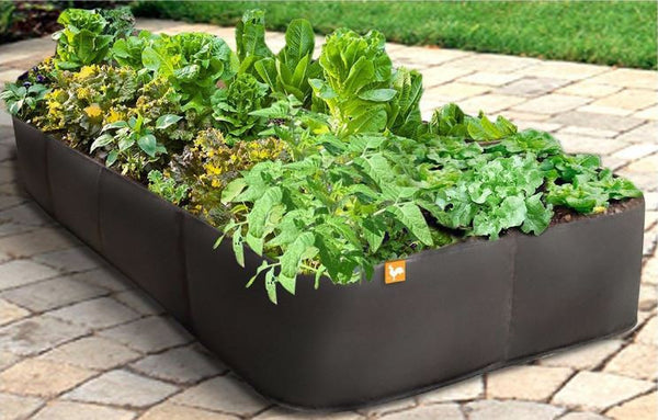 Modern 3ftx6ft Raised Garden Bed Planter in UV Resistant Plastic - YourGardenStop