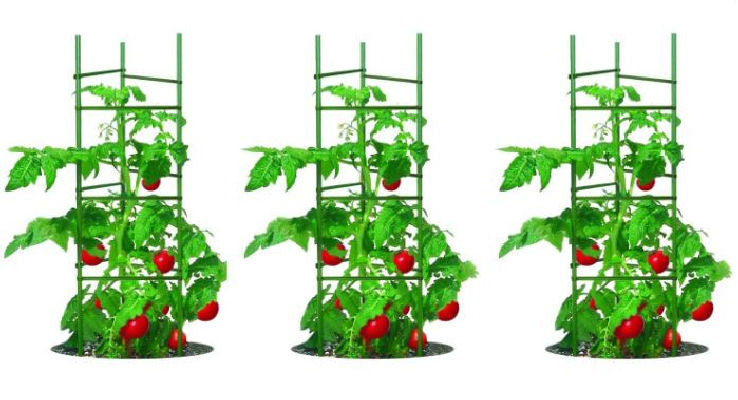 3-Pack of Tomato Plant Cage Climbing Garden Trellis