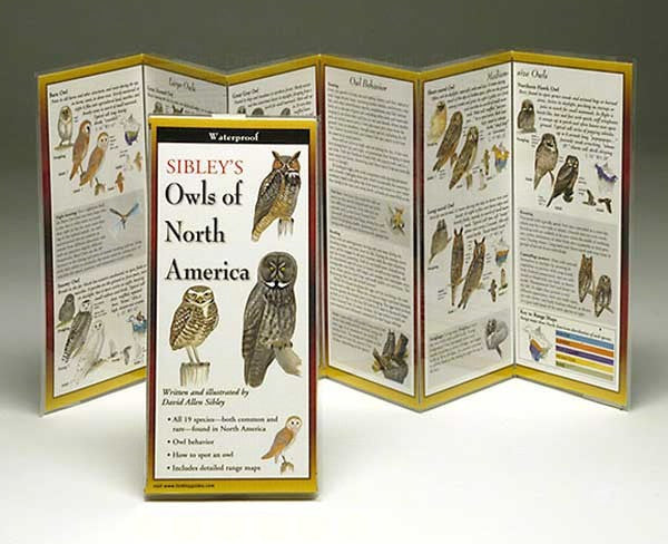 Sibley's Owls of North America - YourGardenStop