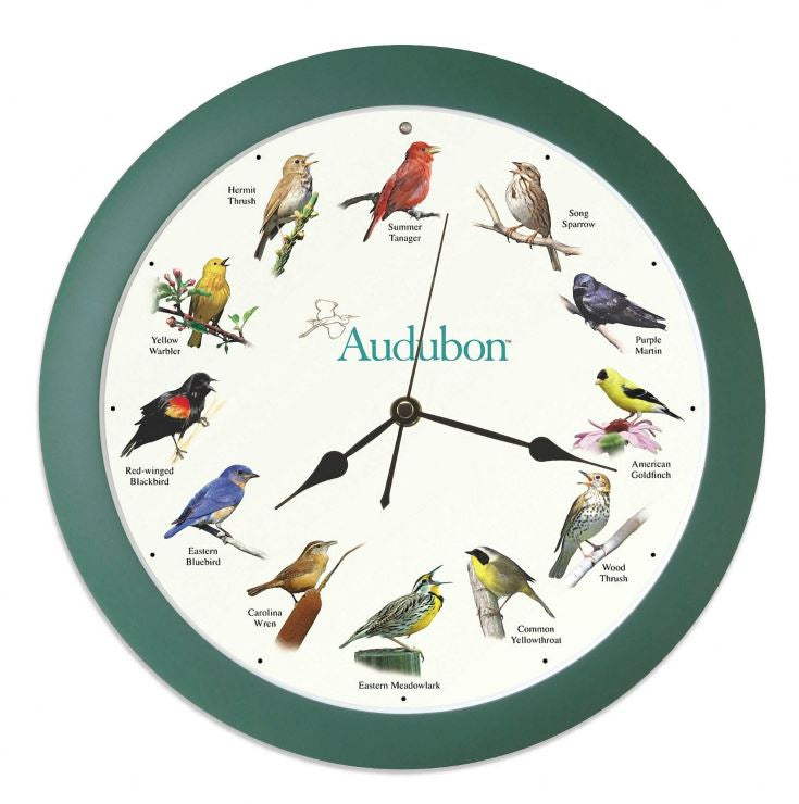 "Audubon Singing Clock 8"" in Green - YourGardenStop"