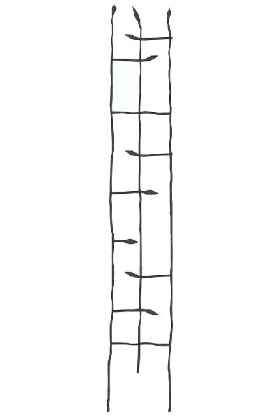 6-Ft Narrow Garden Trellis in Metal Sprouting Twig Leaf - YourGardenStop