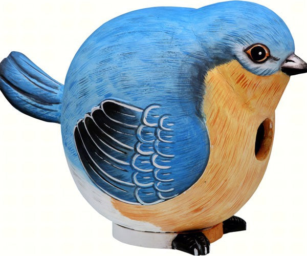 Bluebird Gord-O Birdhouse by Songbird Essentials - YourGardenStop