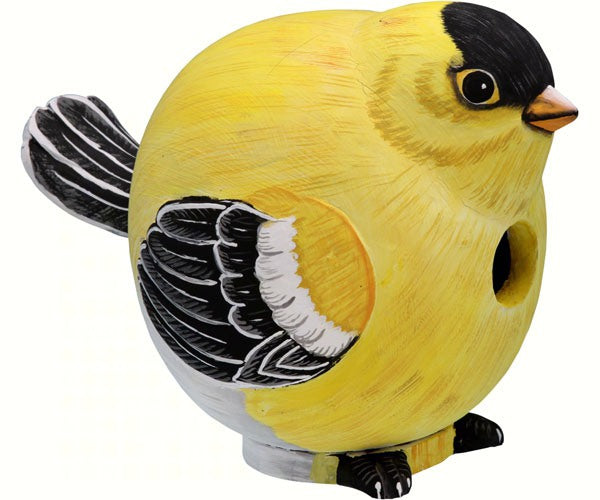 Goldfinch Gord-O Birdhouse by Songbird Essentials - YourGardenStop