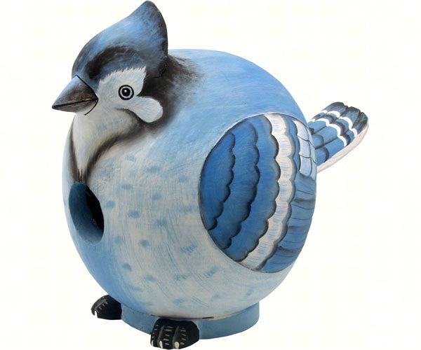 Blue Jay Gord-O Birdhouse by Songbird Essentials - YourGardenStop