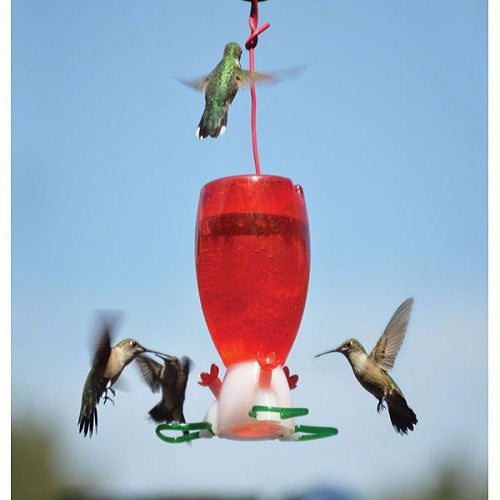 Big Red Hummingbird Feeder - YourGardenStop