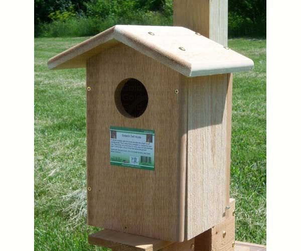 Screech Owl House by Songbird Essentials - YourGardenStop
