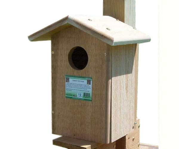 Screech Owl House by Songbird Essentials